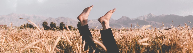 Avis d'expert.e   La corne des pieds : causes et solutions