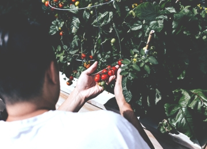 5 trucs pour éviter les blessures de jardinage