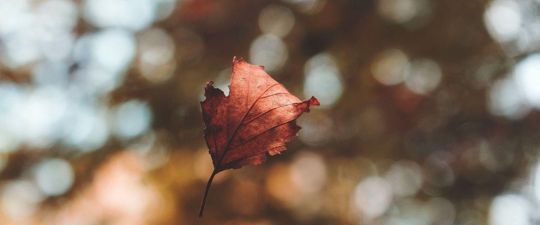 5 conseils pour éviter de se blesser durant le grand ménage d'automne