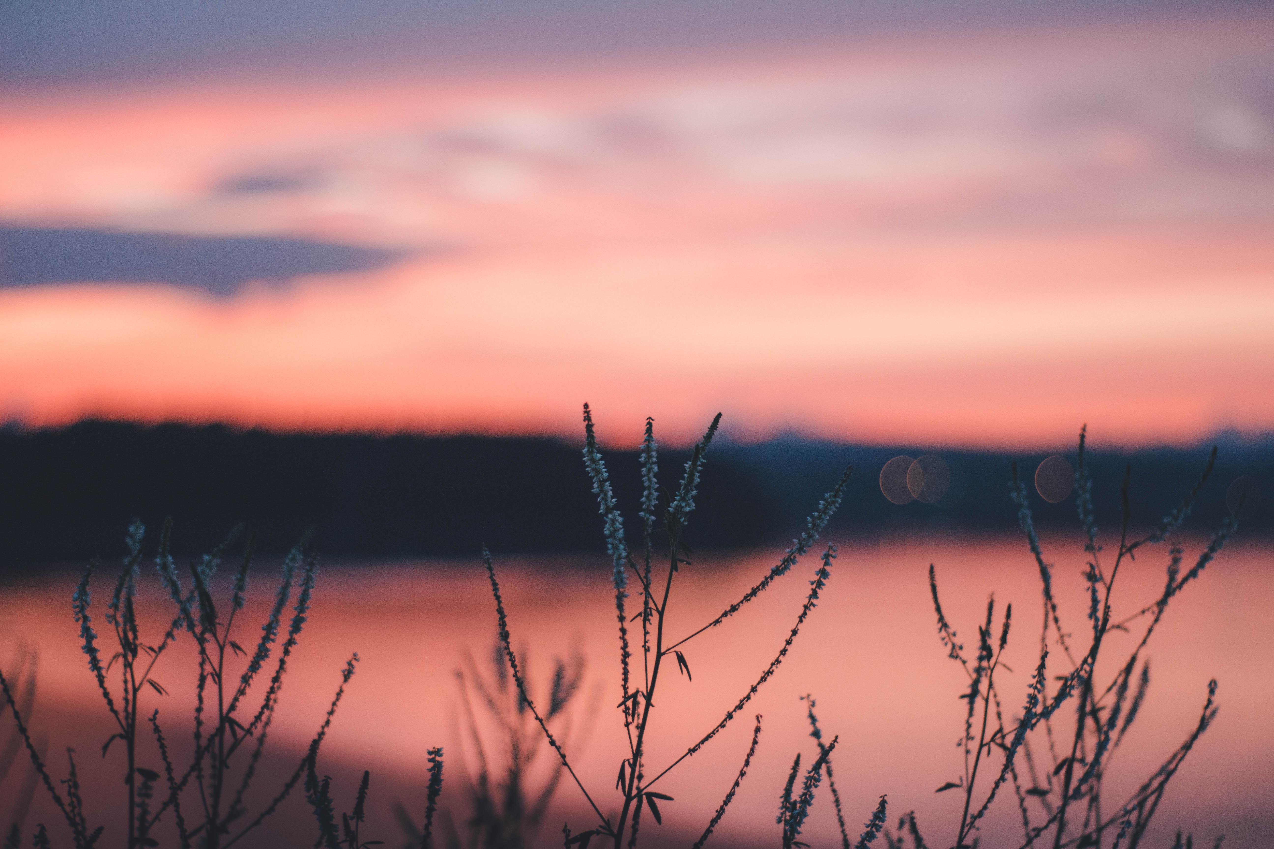 Paysage lac et couchée de soleil